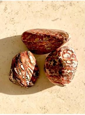Pedra Leopardita- Pedra da Verdade