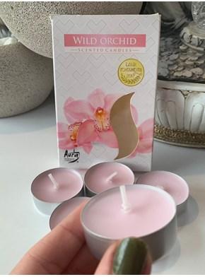Velas Aromáticas - Orquídea Selvagem